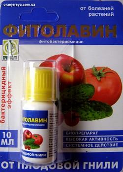 фитолавин 300 инструкция по применению - фото 8